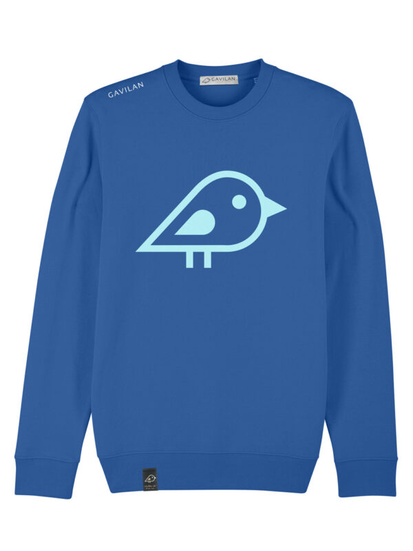 Sweater blue clean
